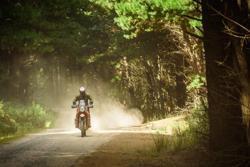 2019 KTM Australia Adventure Rallye (1000).jpg