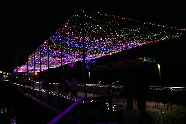 Zoo Lights 2015