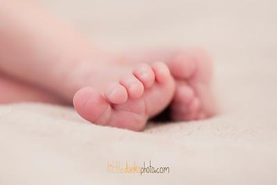 Baby Aubrey-1.4.13