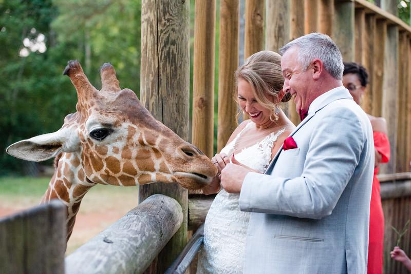 2017-09-02 - Wedding - Doreen and Brad 6190.jpg