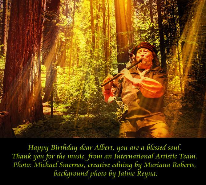 Albert - Birthday Gift #6 (A).jpg