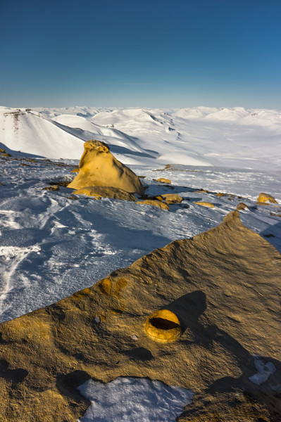 Fossil rock cup, Mount Parnas, North-East Greenland