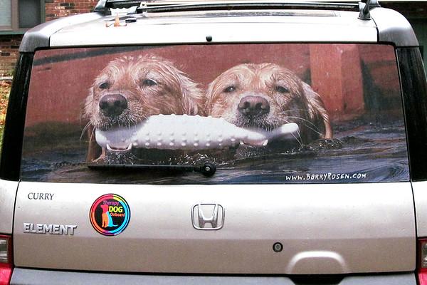 Vehicle Window Screens