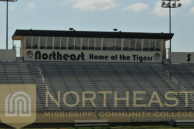 2013-08-15 FB Tiger Stadium