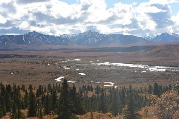 Denali N.P - Alaska