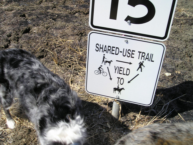 Shared trails. Dogs on leashes have to yield to everybody.