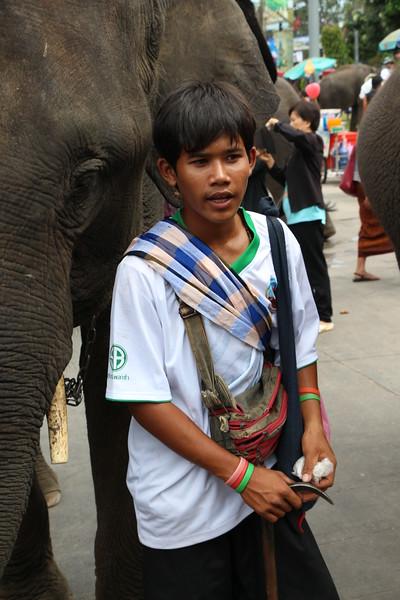 2014-11-14 Surin Elephant Welcome Feast 730.JPG