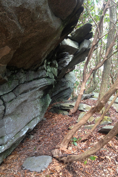 Pickens Nose Trail