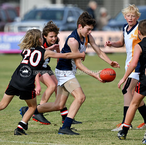 Padthaway-Lucindale Junior Colts - Round 8