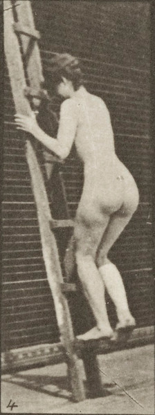 Nude woman ascending a ladder