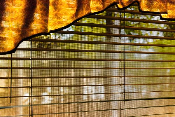 RV Window