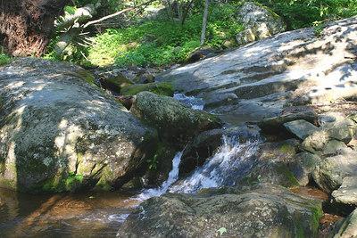 Skyline Drive Dark Hollow Falls Trail
