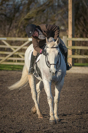 LEC Unaffiliated Dressage, 7th January 2018