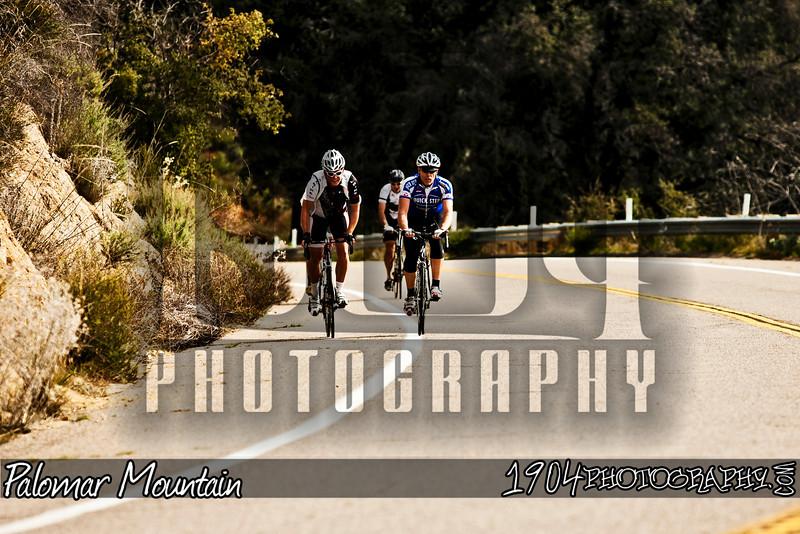 20110205_Palomar Mountain_0067.jpg