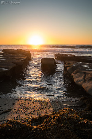 20180111_TIDE_POOLS_LA_JOLLA (7 of 16)