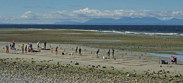 Sandcastles 2016