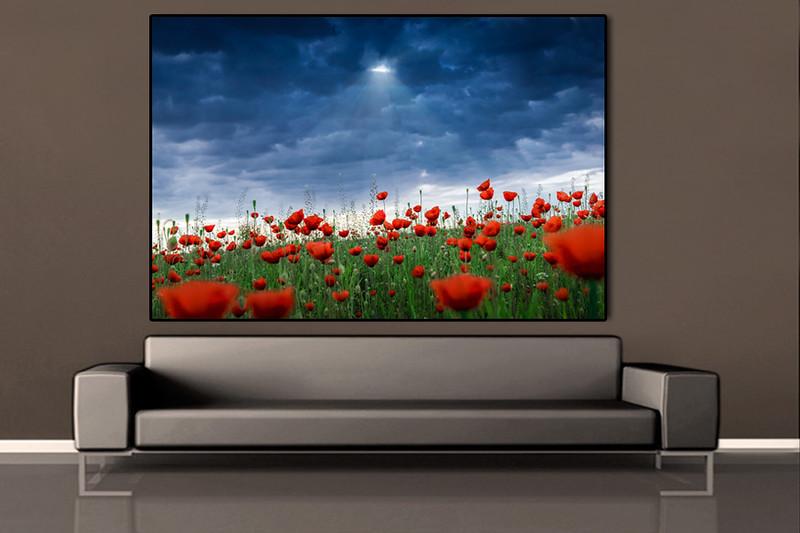 sofa-brown-silver-poppies.jpg