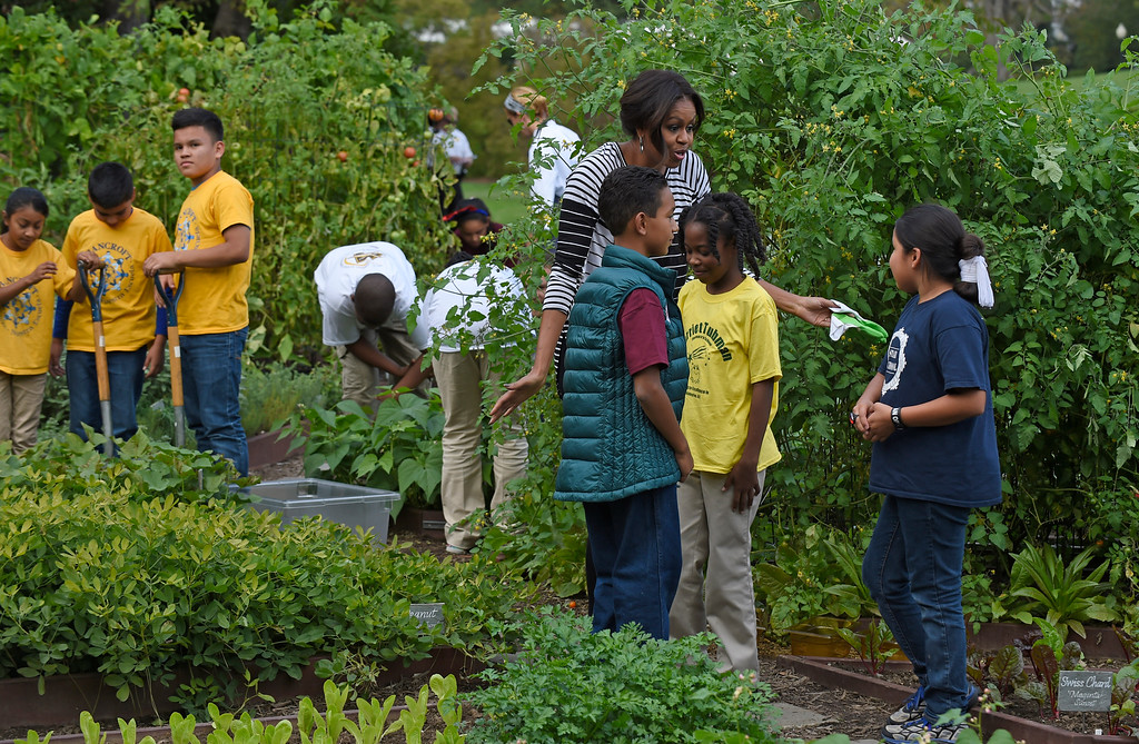. First lady Michelle Obama is joined by school children as they participate in the annual fall harvest of the White House Kitchen Garden at the White House in Washington, Tuesday, Oct. 14, 2014. (AP Photo/Susan Walsh)