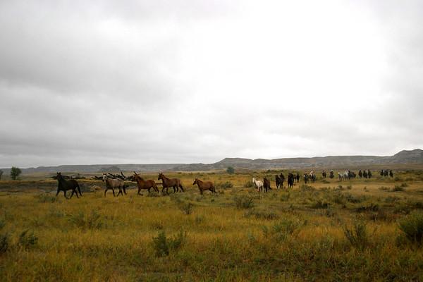 Makoshika Breaks Horse Roundup, Glendive, Mont.: 9/22/06 (Fri - rained out)
