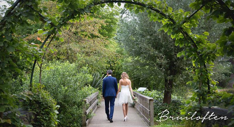 Bruiloften - 2.jpg