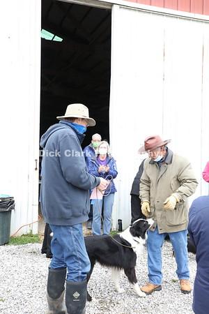 Sunday Herding Award Photos