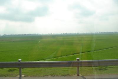 Viet Nam 2005