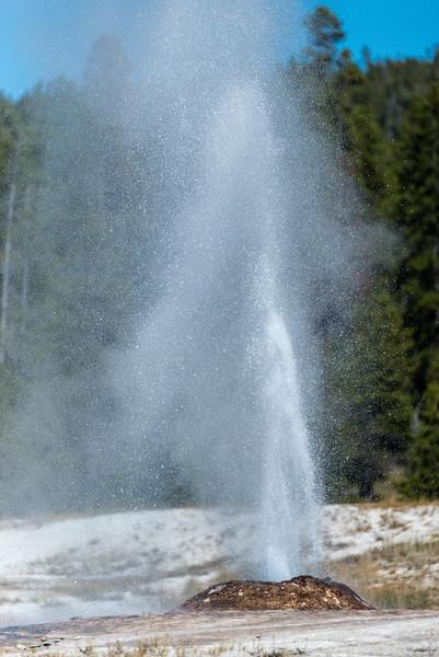 firehole-lake-drive-4.jpg