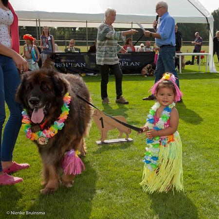 Winnaars Kind-hondshow