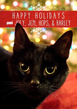 Joey & Jen Christmas Cards 2015
