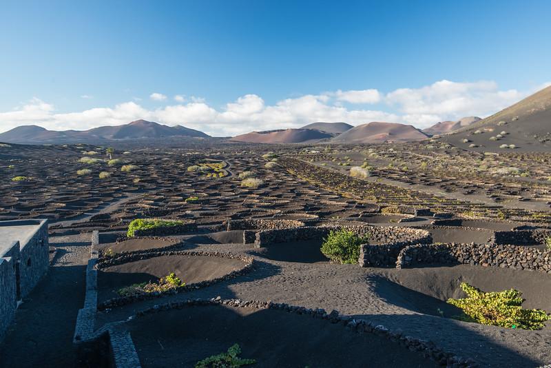 Canary Island-8.jpg