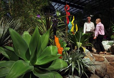 San Francisco Flower & Garden Show
