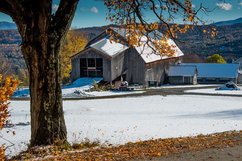 Bragg Hil Barn tree snow sky-1.jpg