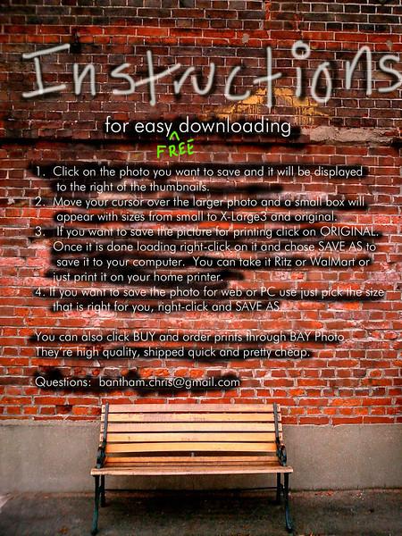 Brick Instructions_edited-4.jpg