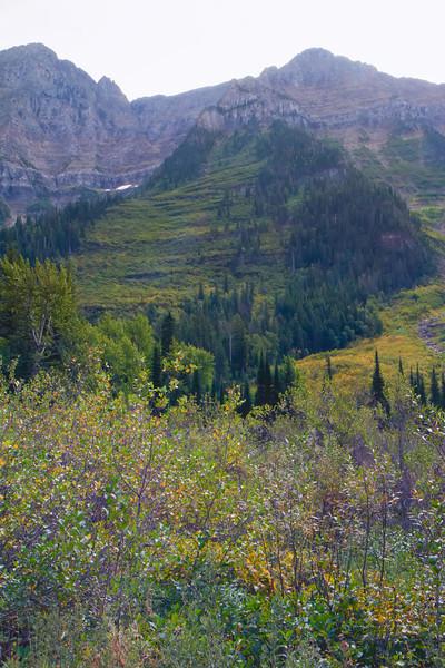 01_Glacier National Park_Montana-24.jpg