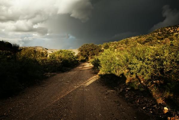 Arizona/New Mexico Landscapes