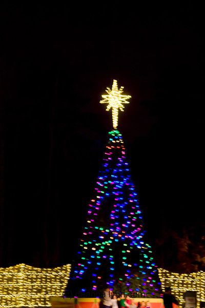 2012.12 december