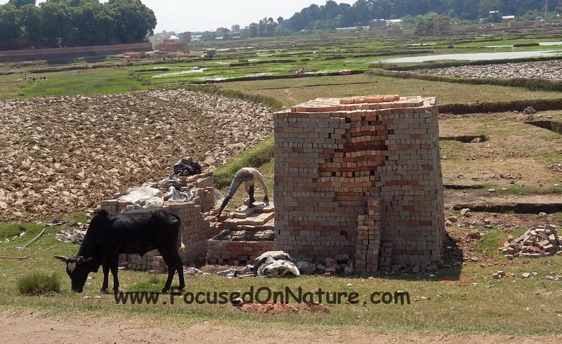 Brick making was everywhere