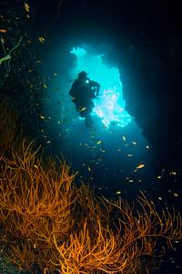 Red Sea - St John's -  2014