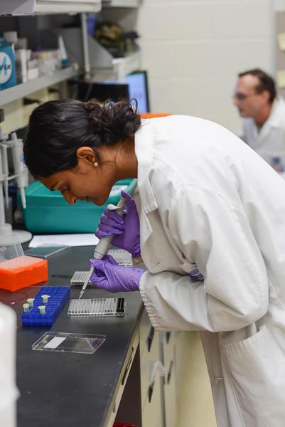 CHIRP 2019 labs041.JPG