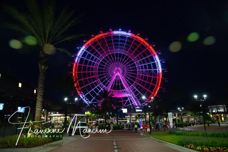 Orlando (783 of 1143).jpg