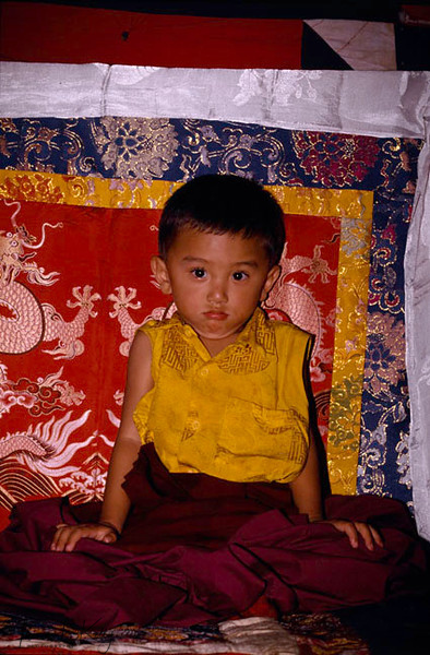 Young Tulku, reincarnation of Dudjom Rimpoche. It is believed that a tulku or Rimpoche is a reincarnation of a former one. Hence when recognized at a young age they are worship, as it is believed that they still hold all the knowledge fromt heir previous lives.