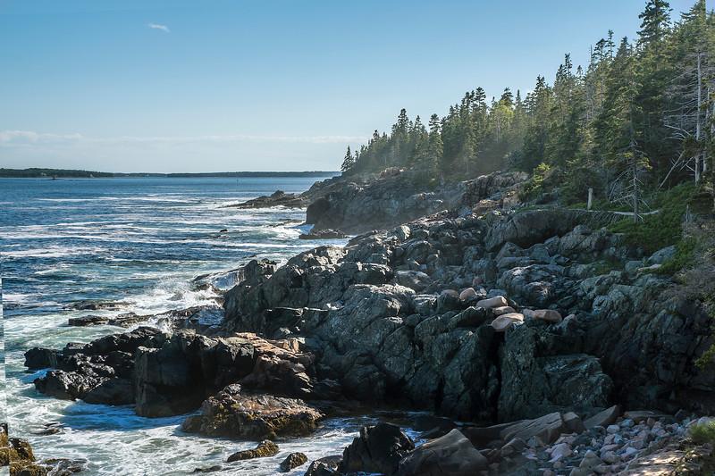 Acadia04.jpg