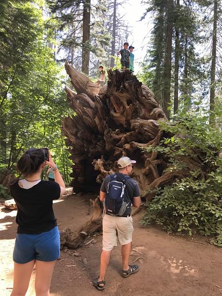 kam7-2019-Yosemite-39.JPG