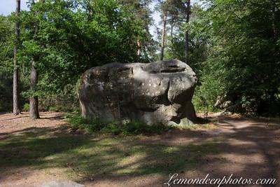 Forêt de Fontainebleau et gorges d'Apremont