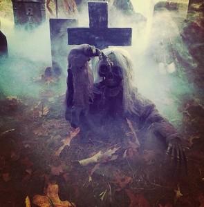 Halloween 2018 madness