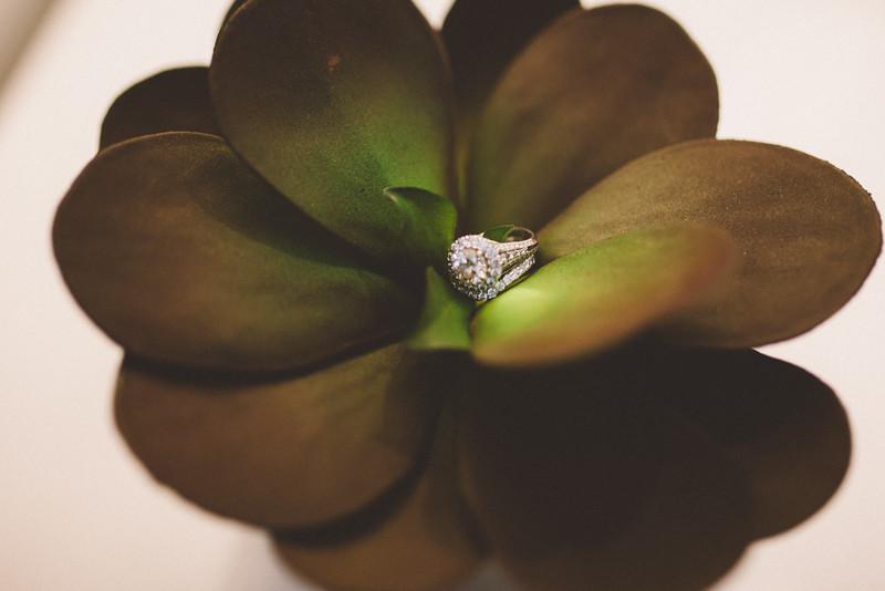 Le Cape Weddings_Sara + Abdul-28.jpg