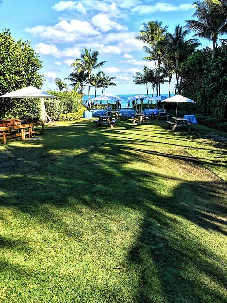 Ritz Carlton Key Biscayne Grounds