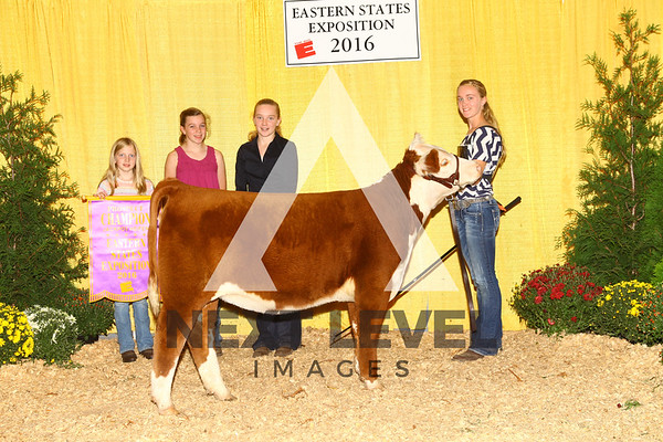 2016 Hereford Backdrop