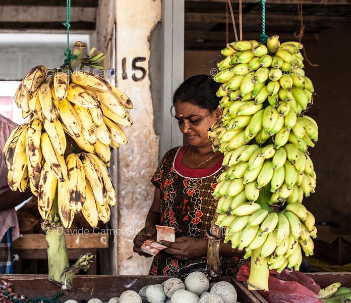srilanka (61 di 74).jpg