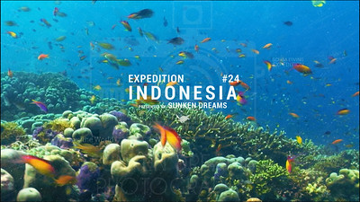 SDSDA Ex 24 Indonesia Episode 6